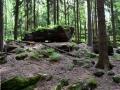 Steinbrechersteig - Foto: Wanderfreak
