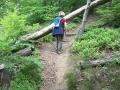 Steiganlage - für Stiegenfreunde