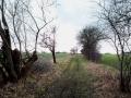 03-marsdorfer-rundweg