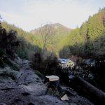Blick vom Flößersteig auf die Felsenmühle