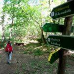 von Bad Frankenhausen zur Barbarossahöhle