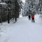 Loipe L5 - rund um die Scharspitze