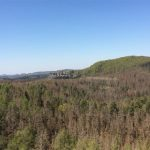 Blick vom Rabentürmchen zum Neuen Wildenstein (Kuhstall)