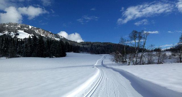 St. Johann in Tirol: traumhafte Bedingungen in der Loipe
