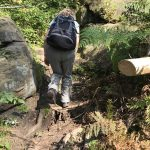 Aufstieg zum Großen Pohlshorn