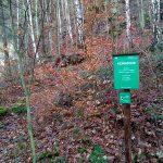 Abzweig Haldenweg - Hirschgrund