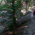 auf schmalen Pfaden zur Barbarossahöhle