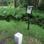 09-grenzweg-vogelwelt