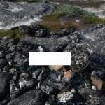 09-inuit-grabhuegel