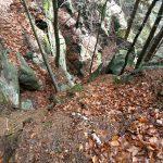 Aufstieg im Hirschgrund