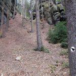 Kletterzugang Störznerfels