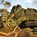 die dem Heulenberg südlich vorgelagerten Kletterfelsen