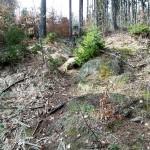 'Wanderweg' zum Sachsenstein