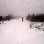 ungemütlich im Schneetreiben