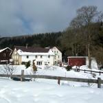 01-Teichhaus