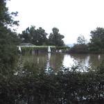 2002-Rosengarten