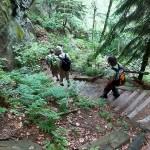 Abstieg Frienstein