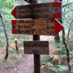Limbara Massivs bei Vallicciola