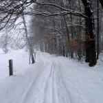 Marsdorfer Rundweg im Februar 2013
